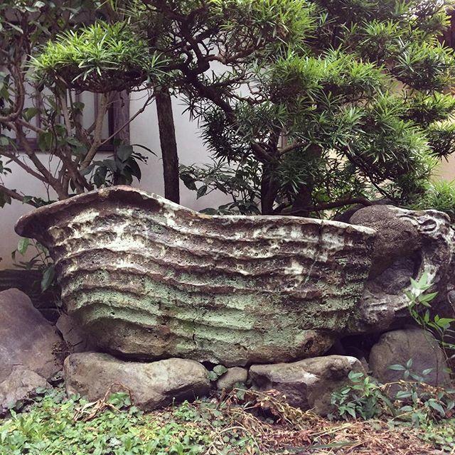 4代六兵衛作の手水鉢。今はもうこんなに大きな作品はなかなか作れないかも。昔の人はすごい。  #清水焼#陶器#陶芸#京焼#京都#六兵衛窯#うつわ#うつわ好き#pottery#ceramics