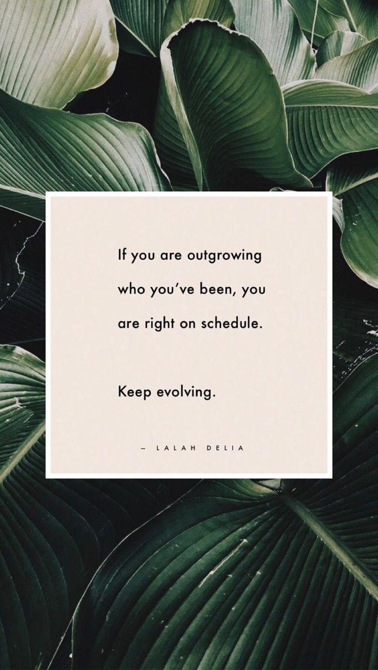 lalah delia // quotes // qotd // words // written // move forward // evolving // positive vibes #keeppositivequotes