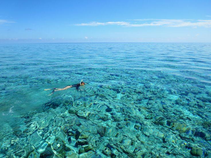 Snorkelling the Rowley Shoals