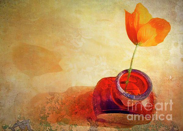 "Orange Poppy in Brown Bottle"" ...enhanced photographic print..."