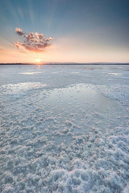Larnaca Salt Lake, Cyprus