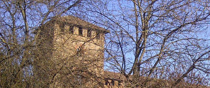 Pavia - Castello visconteo (paticolare) http://notizieoggi.blogspot.it/2015/01/pavia-castello-visconteo-paticolare.html