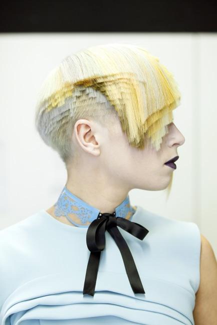 Wella Trend Vision 2012