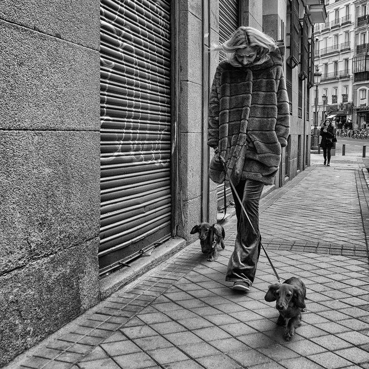 https://flic.kr/p/22JykvY | Paseo | © Luis Mariano González 2017 Luis-131217-0131-Editar-2