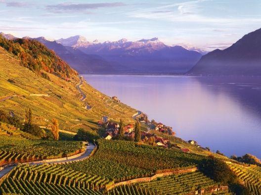 Intercambio de casa en Nyon, #suiza, al pie de los Alpes y junto al lago Léman. Cecile y David intercambian su casa en este precioso pueblo de montaña. #switzerland #suisse #nyon