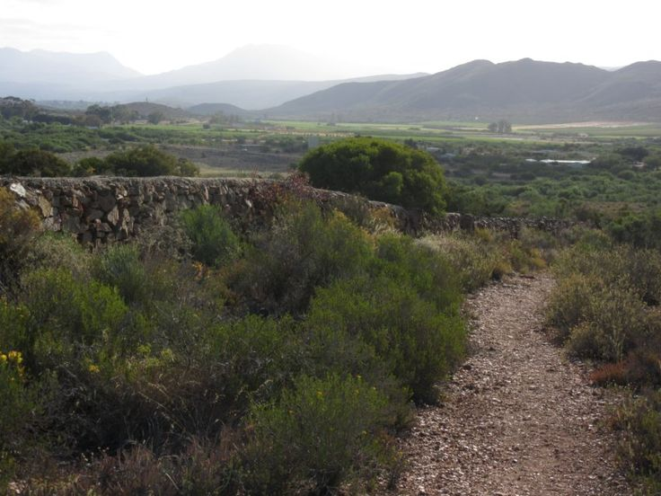 Rooikat Trail, McGregor