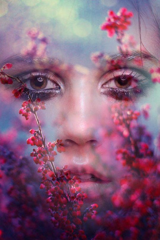 коллажи: лица девушек и цветы (каким бы цветком та или иная девушка стала после перерождения) (принт)