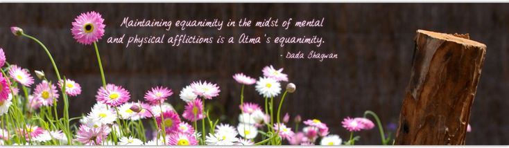 Nice Quote on Real Equanimity....read more ..... www.dadabhagwan.org/scientific-solutions/relationship/problems-in-relationship-stop-fault-finding/
