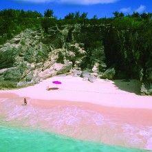 Pink Beach On Budelli Island, Sardini, Italy