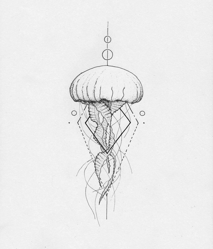 Cute Jellyfish Drawing Tumblr