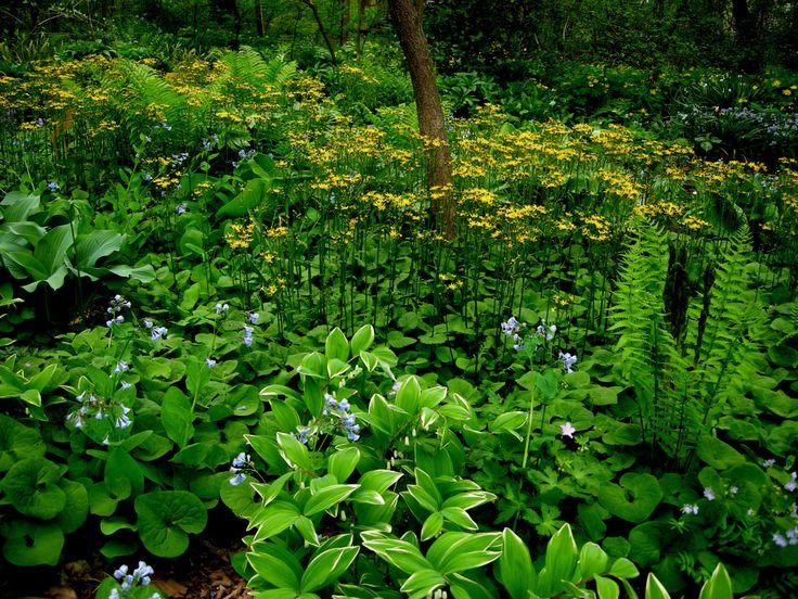 Flower Garden Ideas Illinois unique flower garden ideas illinois edging with pebbles and stones