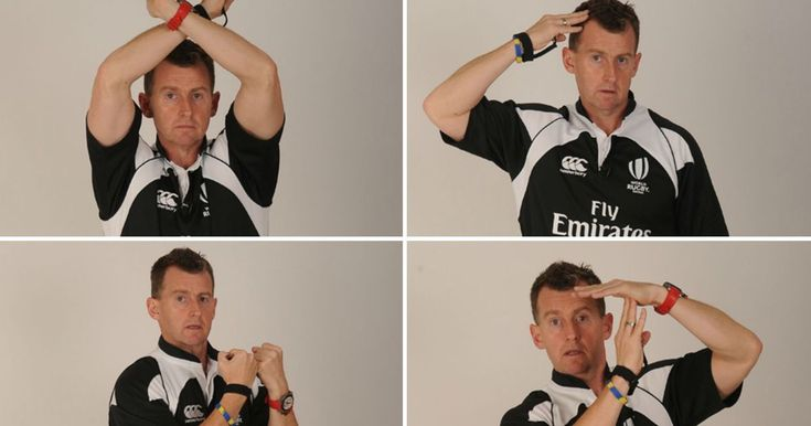 Rugby World Cup 2015: What do the referee's hand signals actually mean? Nigel Owens' fascinating guide to the laws - Wales Online