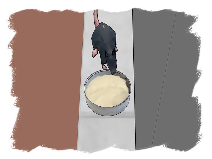 How to make rat poison homemade rat poison rat poison