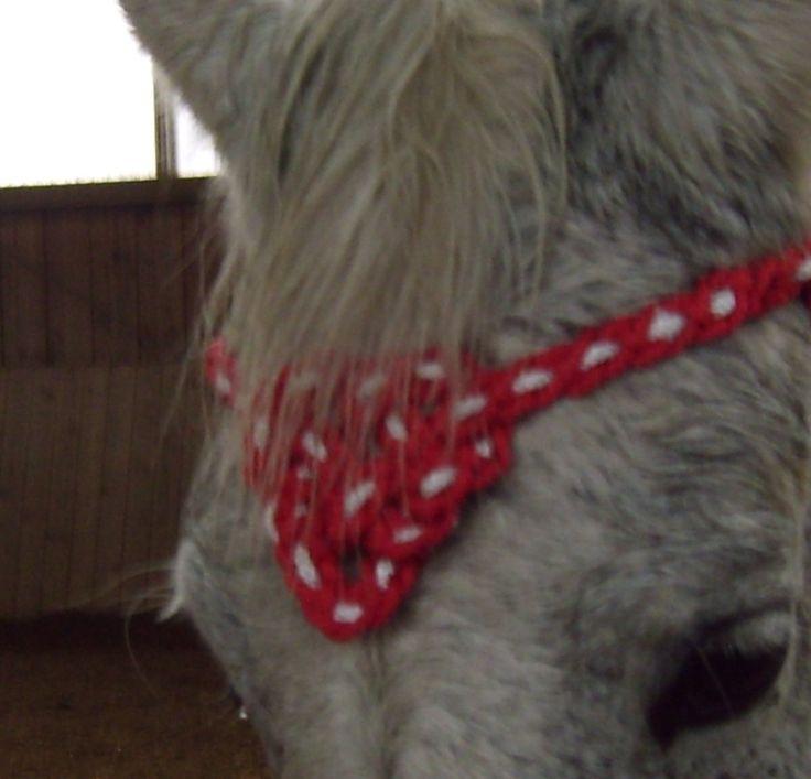 Statt eines einfachen Stirnriemens kann es auch mal ein schönes Medaillon sein, das die Stirn deines Pferdes schmückt. Weitere Ideen zum Selbermachen findest du hier: www.manum-efficere.de