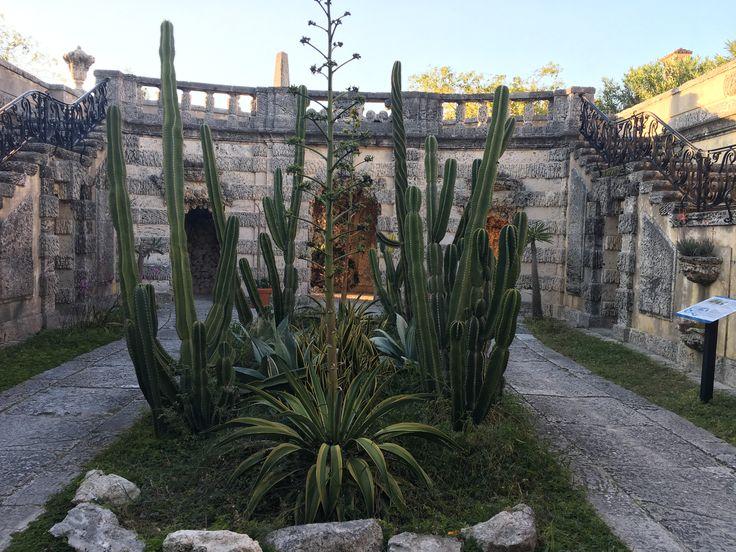 Vizcaya garden. Miami, Fl