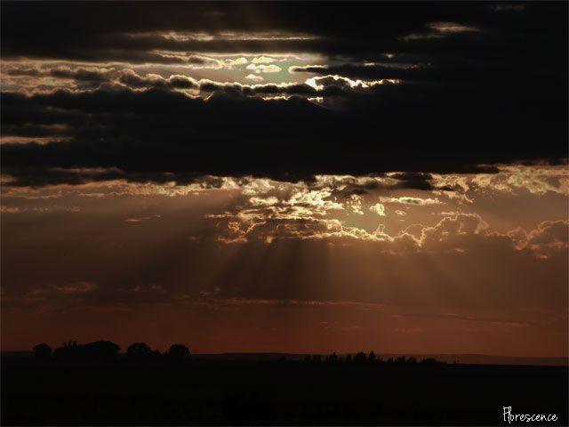 Sunrise near Edenburg, Free State South Africa, (c) Florescence