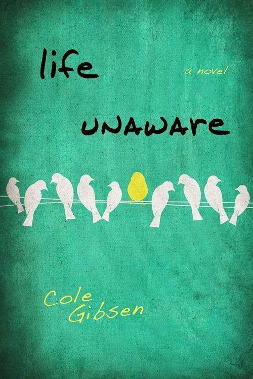 Life Unaware - Cole Gibsen