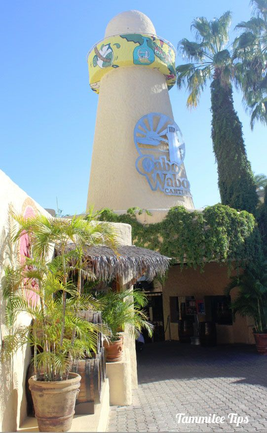 Cabo Wabo Cantina, Cabo San Lucas Mexico - stop in for a drink and some souvenirs to bring back home <3 #Norwegian #NCL