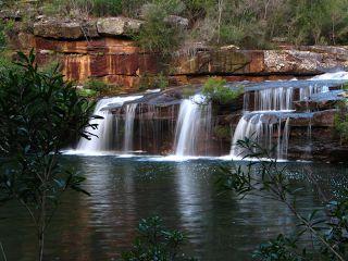 lakeliveslife: NSW South Coast - The Royal National Park