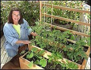 Ideas For A Vegetable Garden small veggie garden ideas zandalusnet Vertical Vegetable Gardens Veggie Garden Ideas