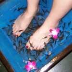 Try a Fish Pedicure..popular in other countries the fishies eat off our dead skin. I couldn't do it. Too ticklish!