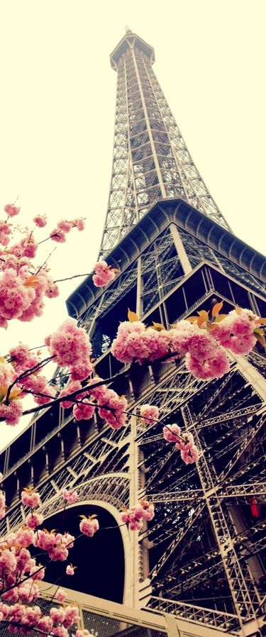 I would love to visit Paris...x