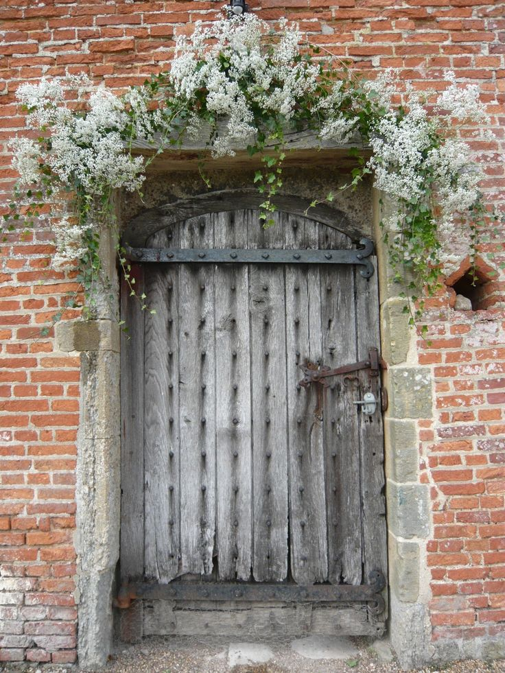 beautiful, frothy, ivy arch, over door, no flowers all the way, just highlighted areas.