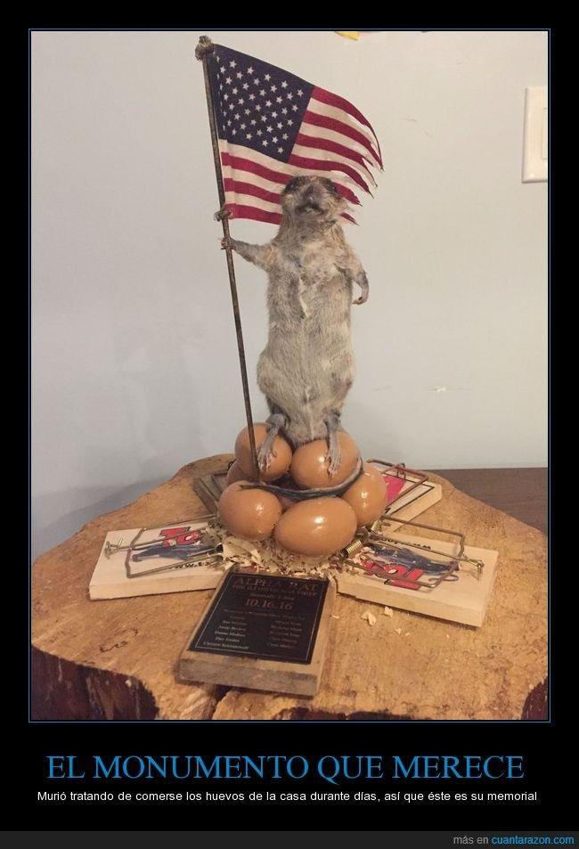 Murió tratando de comerse los huevos de la casa durante días, así que éste es su memorial - Murió tratando de comerse los huevos de la casa durante días, así que éste es su memorial   Gracias a http://www.cuantarazon.com/   Si quieres leer la noticia completa visita: http://www.skylight-imagen.com/murio-tratando-de-comerse-los-huevos-de-la-casa-durante-dias-asi-que-este-es-su-memorial-murio-tratando-de-comerse-los-huevos-de-la-casa-durante-dias-asi-que-este-es-su