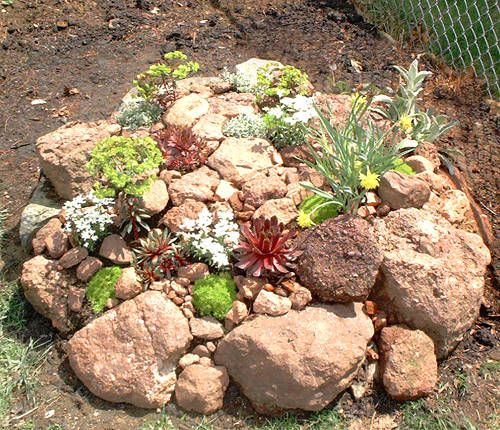 I like this because it reminds me of all the rock walls around here. Many plant succulents, ferns, and herbs, and let them go crazy. I've planted hens and chicks in ours.