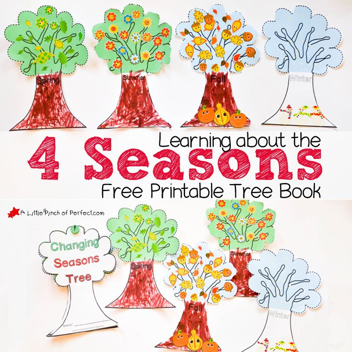 Learning About the 4 Seasons Cute Free Printable Tree Book   A Little Pinch of Perfect