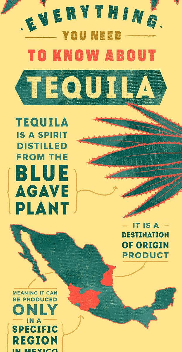This 5-Minute Guide To Tequila Will Make You Look Like An Expert