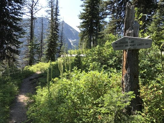 An hour drive north of the town of Seeley Lake Montana is the Glacier Lake Trailhead and the starting point for your hike.