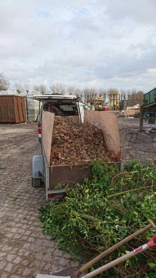 Schoolpleintje weer clean: 1030kg aan bladafval! (Wel een beetje vochtig...)