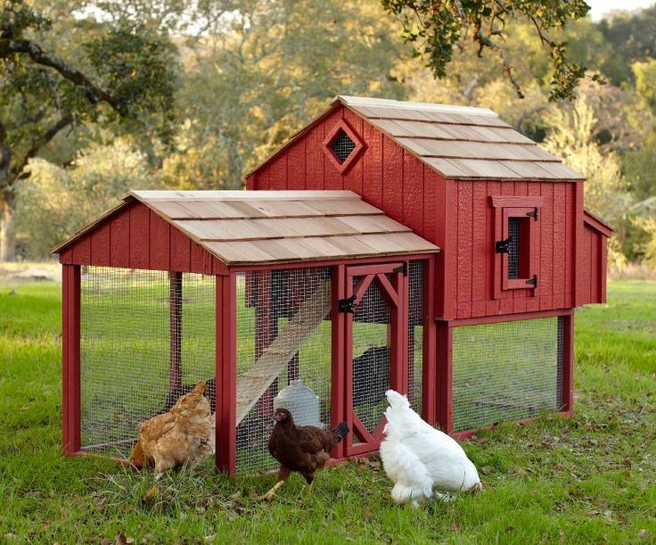 45 best images about hen houses on pinterest best for Red chicken coop