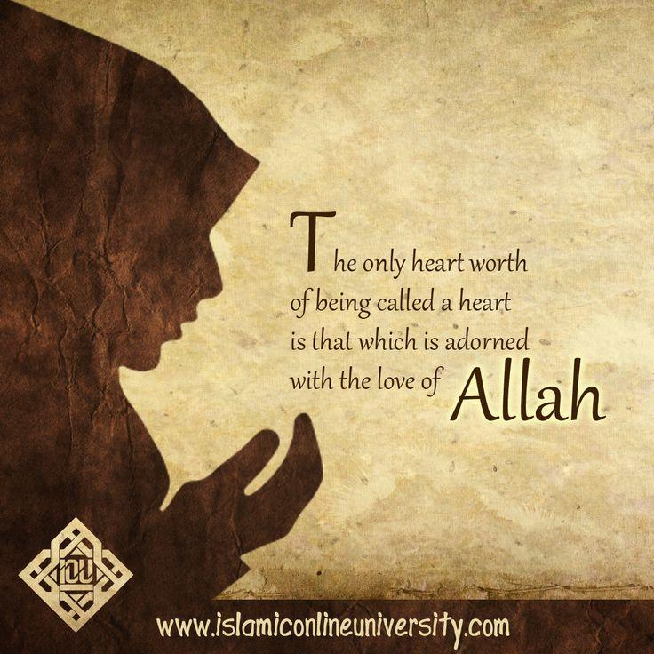 Let the love of Allah in your heart be the light that guides you through your darkest moments.