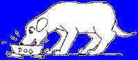 01 1 Symptoms of Cushing's Syndrome - VeterinaryPartner.com - a VIN company!--My dog has cushings,so read the signs.
