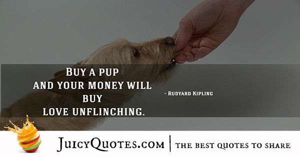 Quotes About Dogs - 6