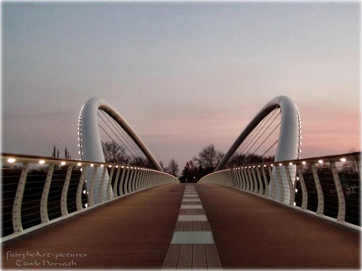 Mayfly Bridge in Szolnok (in Hungarian: Tiszavirág-híd) #Hungary #bridge #Europe #travel #architecture #design