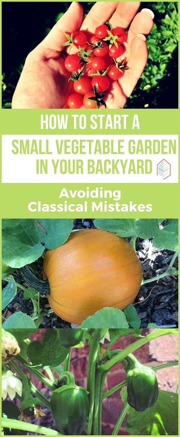 4361 best genius garden hacks u0026 free plans gardening