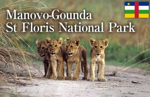 the manovo gounda st floris national park Manovo-gounda st floris'n kansallispuisto | unesco world heritage site (en), national park (en.