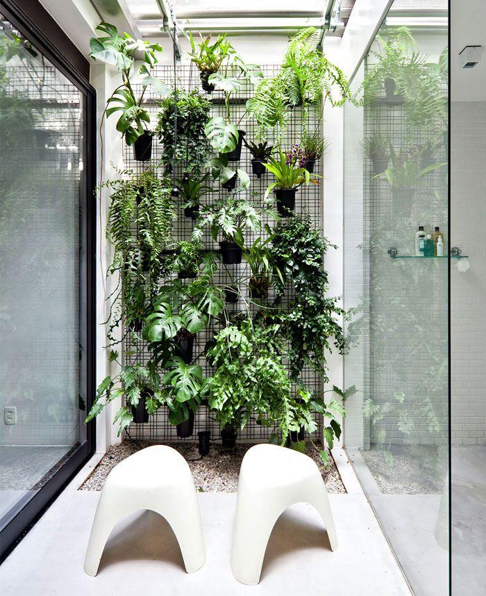 Plant Wall.