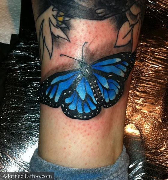 Blue butterfly. -maybe against magnolia, pay mind to shadowing
