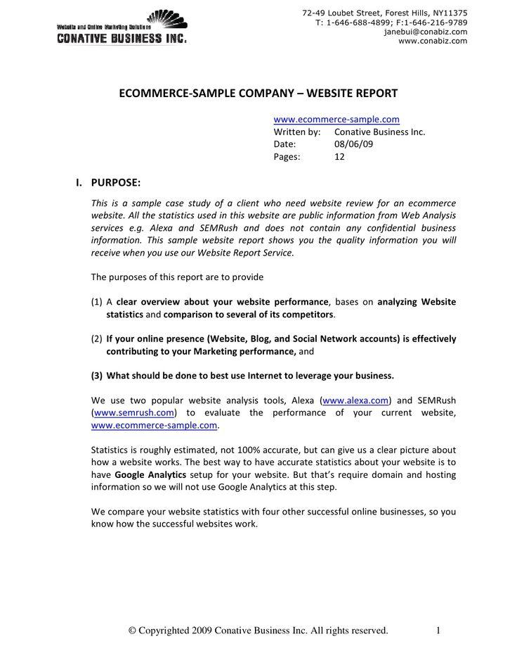 Sample Ecommerce - Website Report v2 by CBI Digital Inc. via slideshare