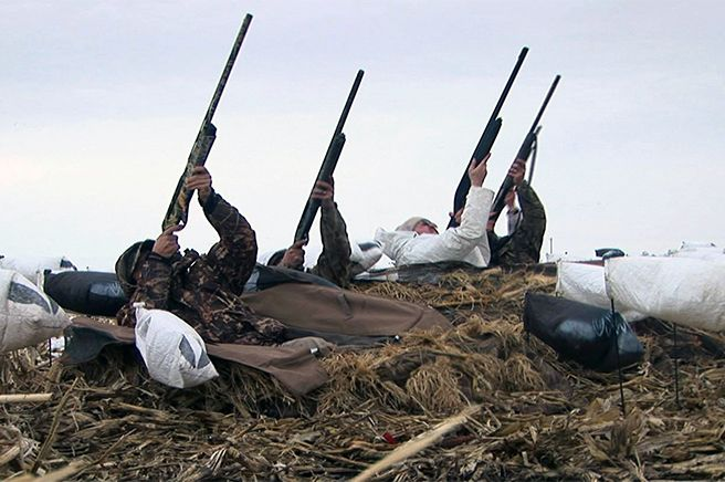 snow goose hunting photography | is known as a pheasant destination in fall, but exploding snow geese ...