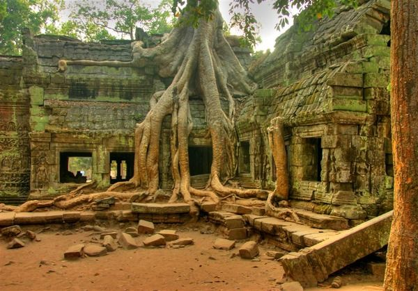 Angkor Wat in Cambodia - Ta Prom Temple images.  Unfortunately my travel visa didn't let me leave Vietnam to see this temple... definitely the next visit!