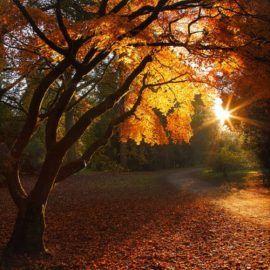 Astronomiczna jesień  galeria jesiennych inspiracji
