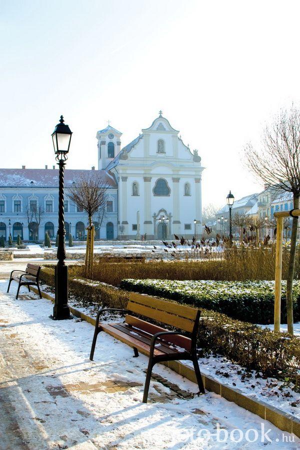Vác, Hungary #winter #Hungary