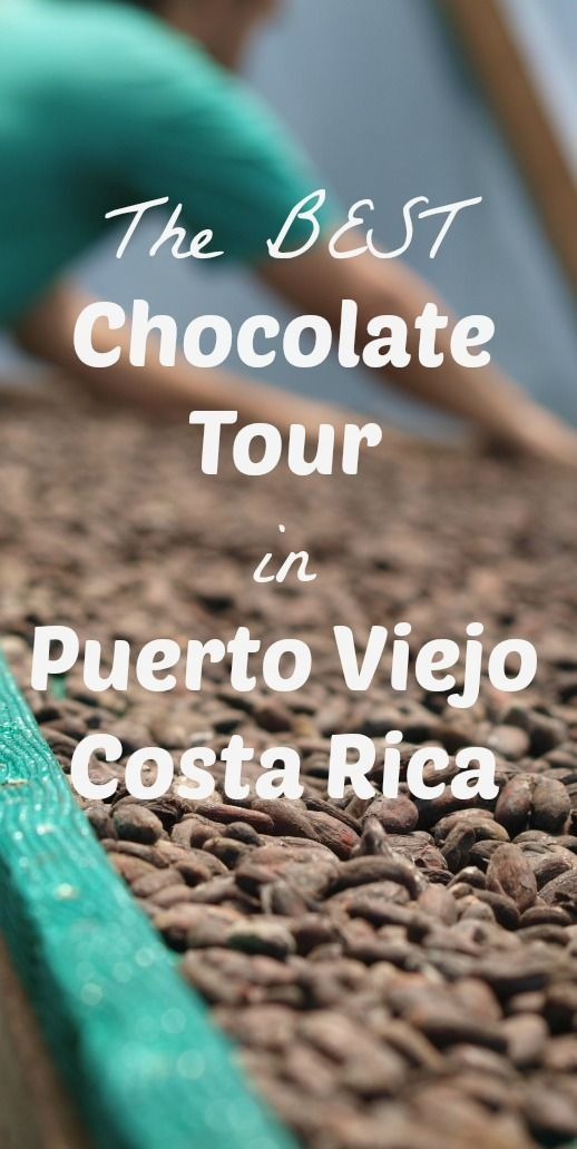 Any coffee lover knows that some of the best coffee beans in the world come from Costa Rica. But did you know that Cacao beans are also abundant in Costa Rica and are also considered to be some of the best in the world?