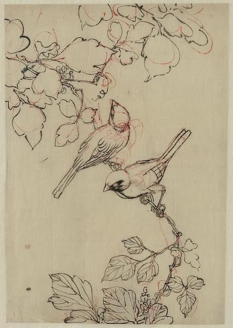 Title: Two birds perched on grapevines. Date Created/Published: Between 1750 and…