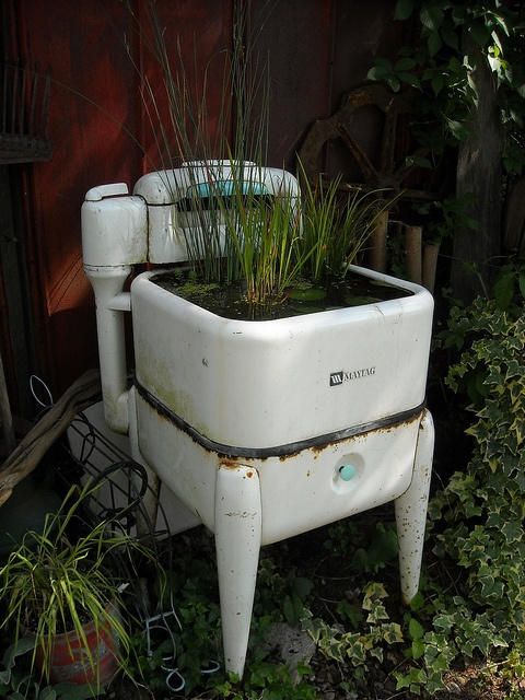 ¡Larga vida a las máquinas! - interesting use of an old washing machine, a container for water plants.